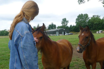 Equine Assisted Therapy/Learning